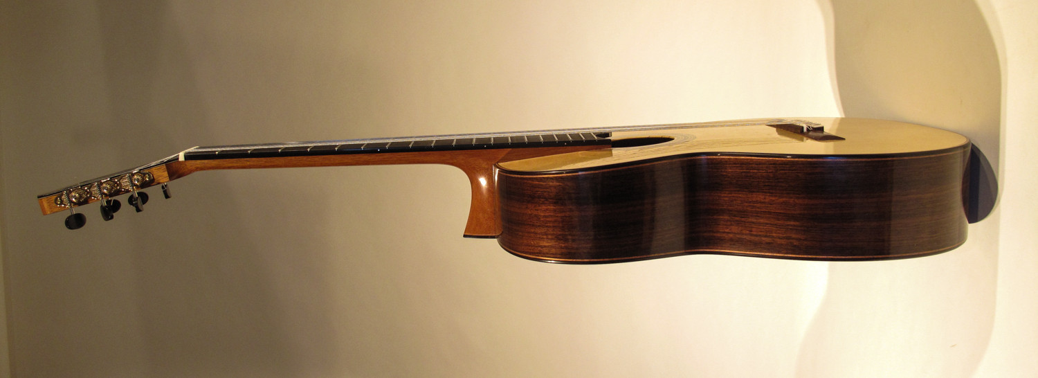 Elevated Neck Design Guitars Of Gregory Byers